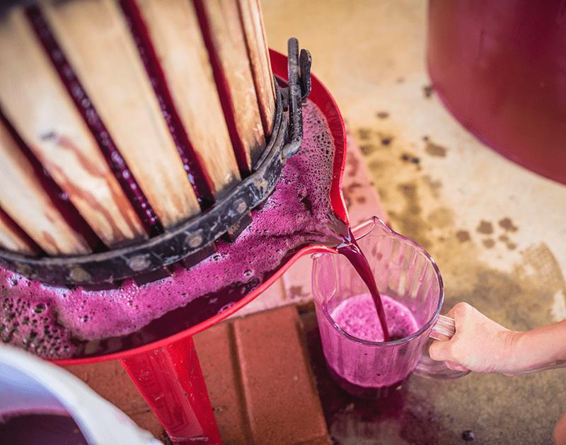 Using A Wine Press