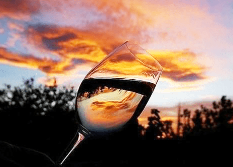 What Using Pectic Enzyme Does To Wine