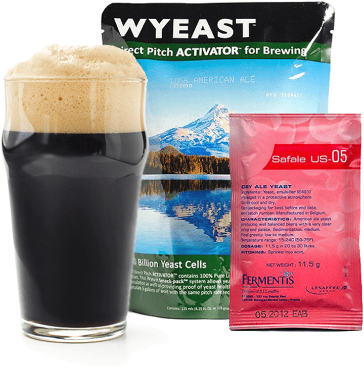Yeast for Brewing High Gravity Beer