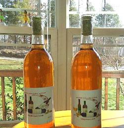Homemade Persimmon Wine
