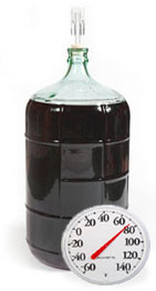 Carboy With Fermentation Temperature Too Low