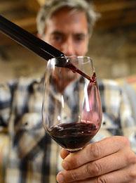 Homemade Wine Alcohol Level