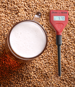 A pH Meter For Brewing Beer