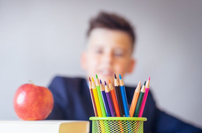 Illusions of Inclusion in Special Education for Autism