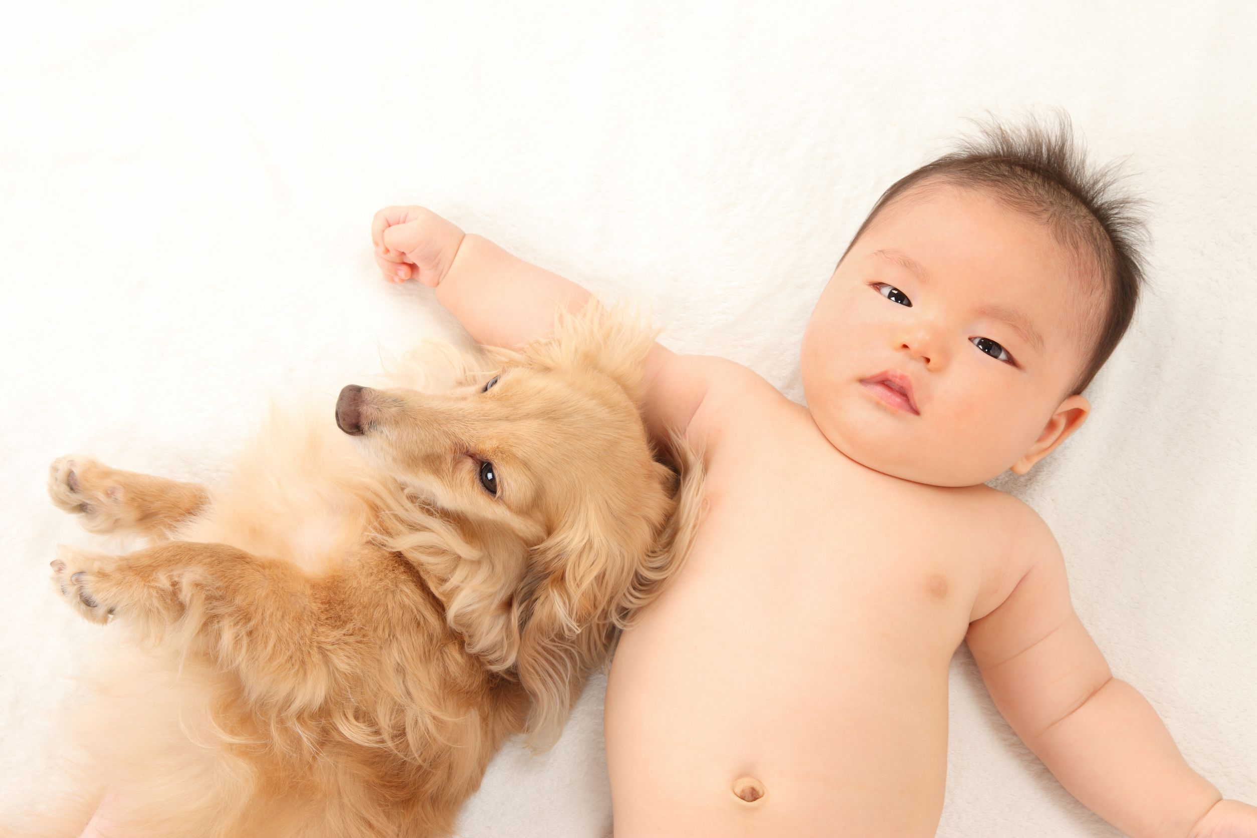 Dogs and Children: Why they Must Have Eachother