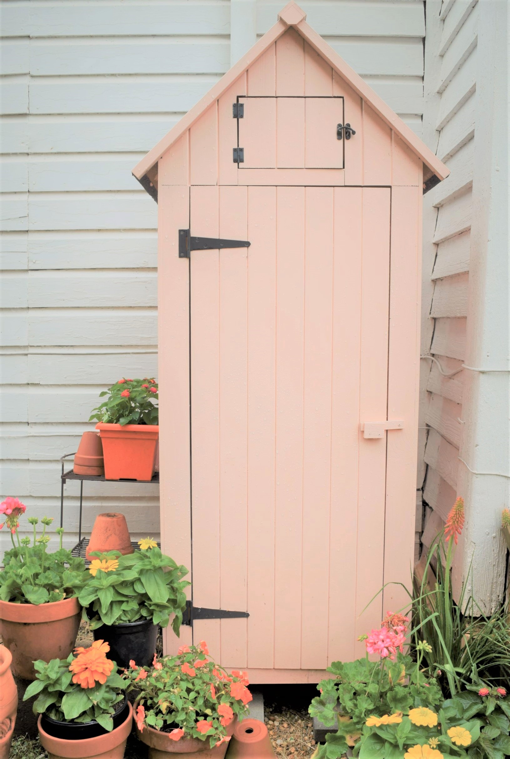 How to Grow a Cottage Garden in the South