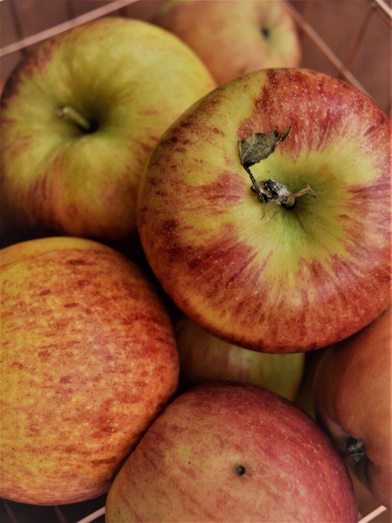 apples in basket close up