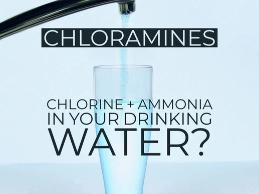 Chlorine and Ammonia in Drinking Water
