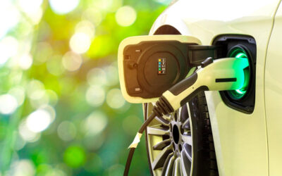 The Ecosystem of Government EV Investment and Incentives