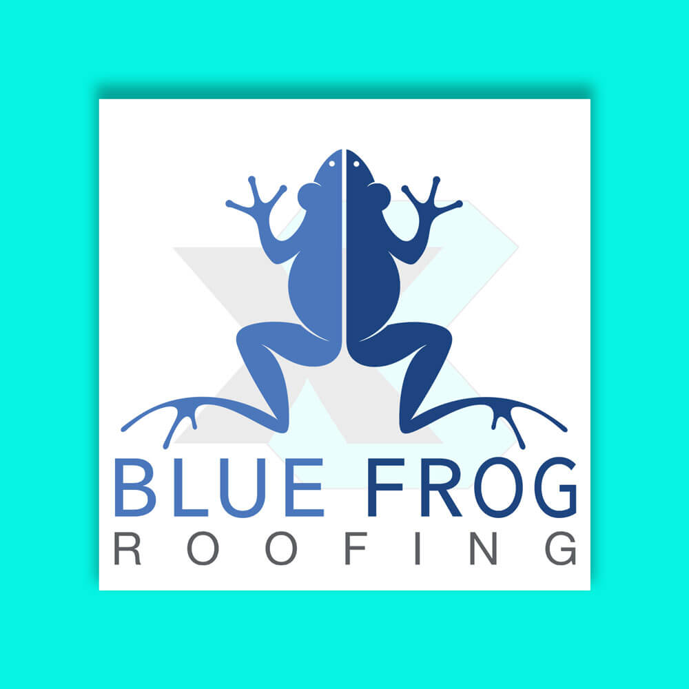 X3 Marketing Group SEO Case Study: Blue Frog Roofing