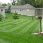 lawn care large backyard