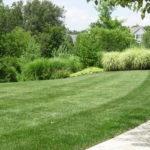 lawn care neighborhood HOA