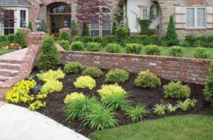 yard landscaping columbia mo