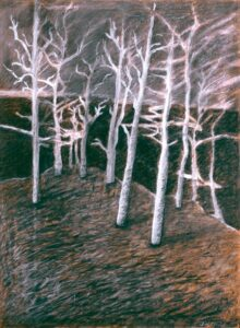 """Electric Trees Charcoal, conte crayon 17"""" x 23"""" (image) 30"""" x 24"""" (framed)"""
