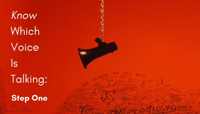 black megaphone hanging over a black scribble of words like opinion and capitalism (in Portuguese) on a red background with the words in white at the left: Know Which Voice is Talking: Step One.