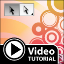 Adobe Illustrator Tutorial – Basic Selection VS Direct Selection