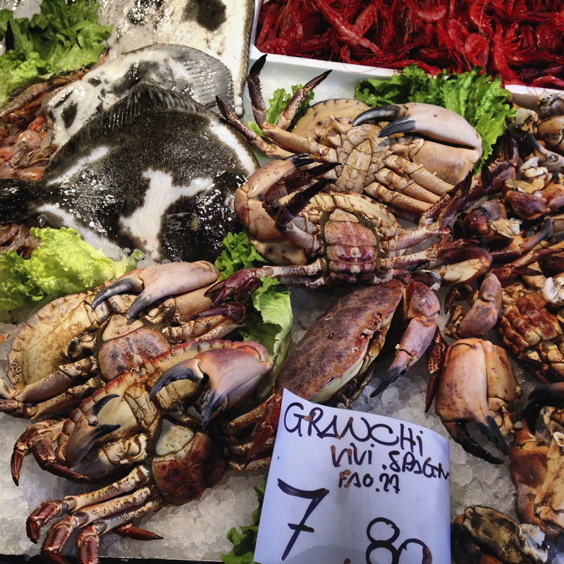 The granchi (crabs)