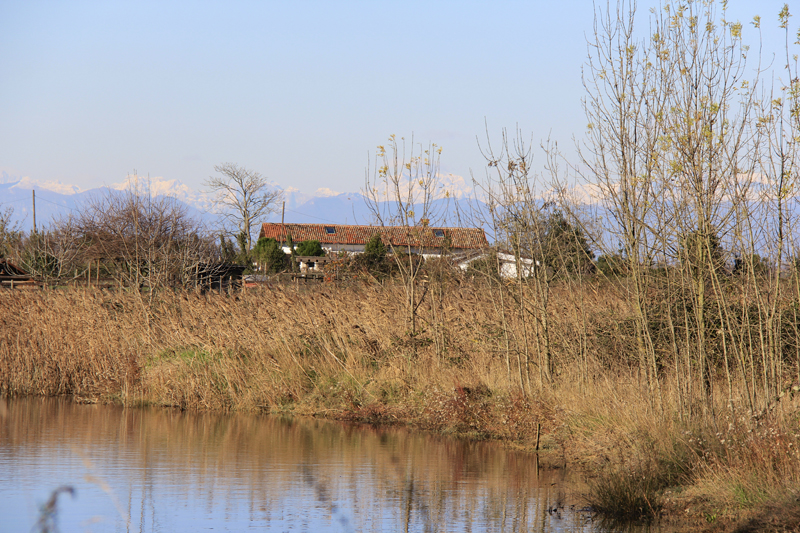 Torcello was very different from the other islands of Venice proving that each island offers it's own unique beauty