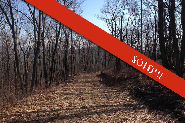 188 Acres of Hunting Land