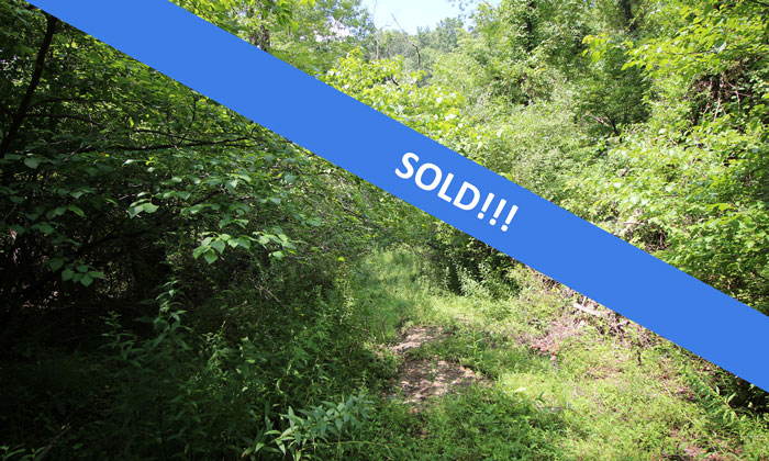 68 Acres Land for Hunting or Rec