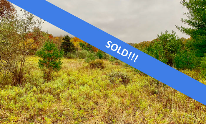 45 +/- Acres of Awesome Land