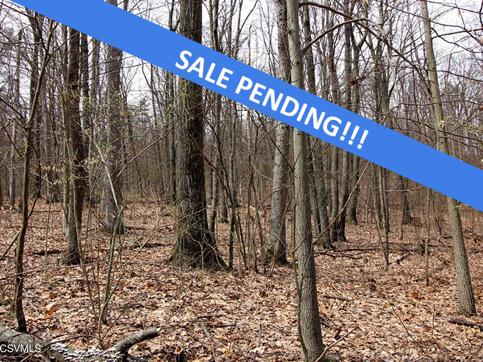 109 Acres of Vacant Land