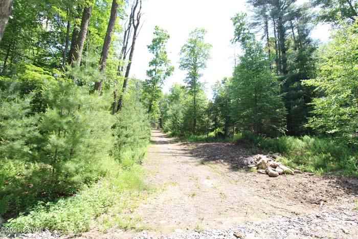 2.53 Acre Wooded Parcel