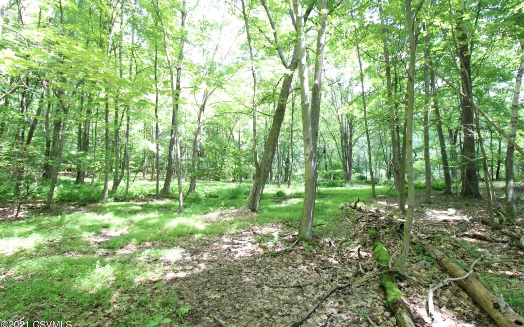25.9 Acres of Land