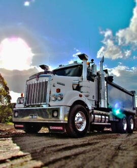 Minority Owned Freight Shipping Companies in Houston