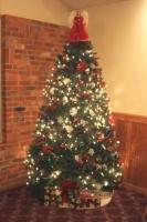 2013 TVD Christmas Party 01.JPG