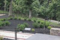 Hunam Cremains Memorial Site.JPG