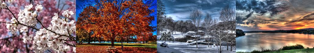 Four Mild Seasons