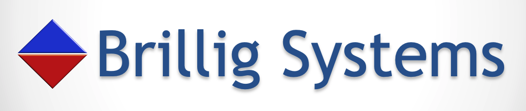Brillig Systems
