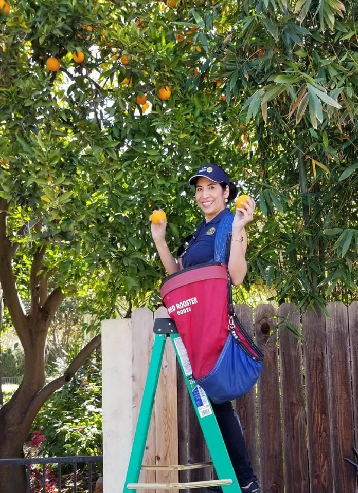 Essay Contest Winner Harvest Rotary Irvine 14