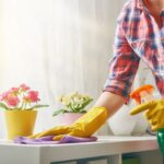 Efficient Cleaning Techniques that You Should Know