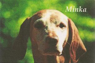 Mehagian's Minka MH VC CD CGC