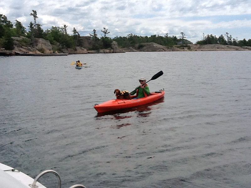 Rex loves kayaking!