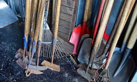 Garden tool storage, 7 ways to store your gardening tools