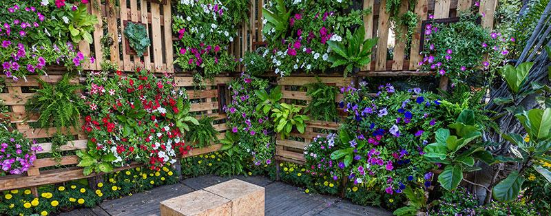 vertical garden with pallets