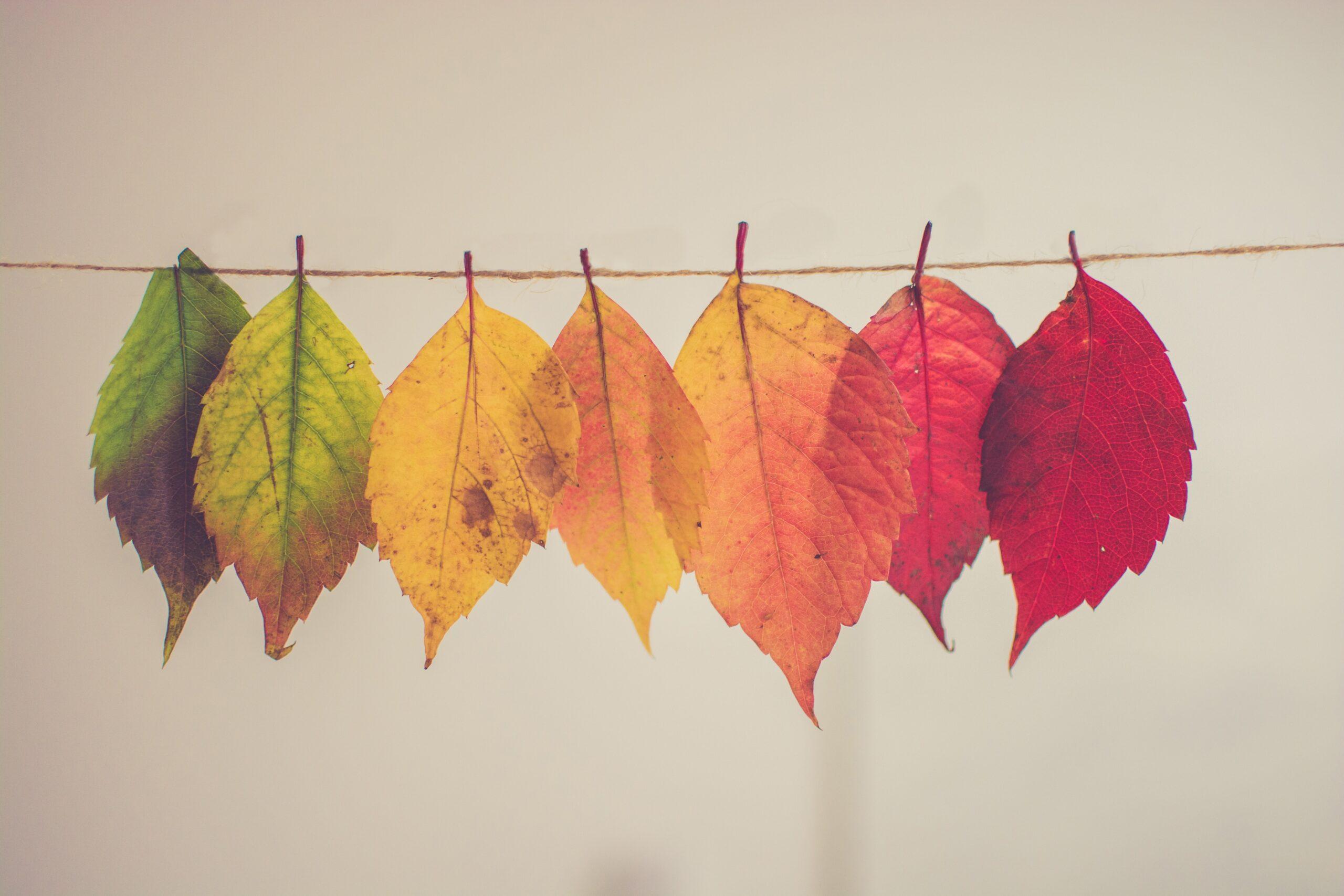 The Art of Managing Change