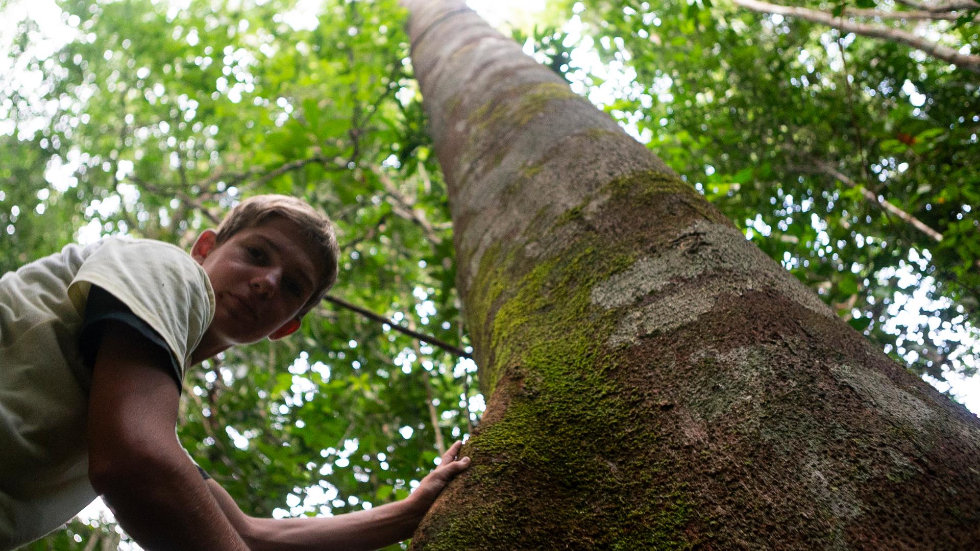 VivAmazônia