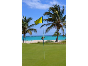gallery_Golf_1
