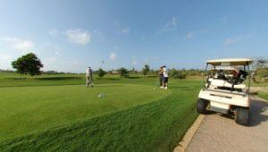 golfdivi