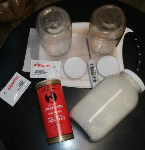 yogurt materials