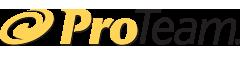 pro-team logo