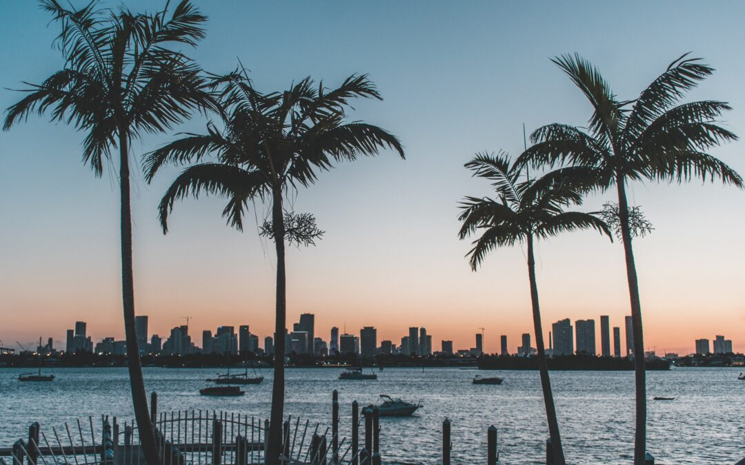 5 Reasons Why to Invest in Real Estate in Florida in 2022