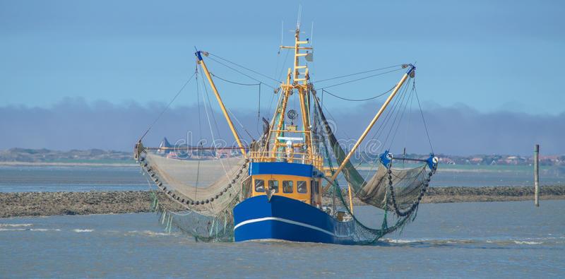 El 78% del pescado desembarcado en el mundo procede de poblaciones sostenibles