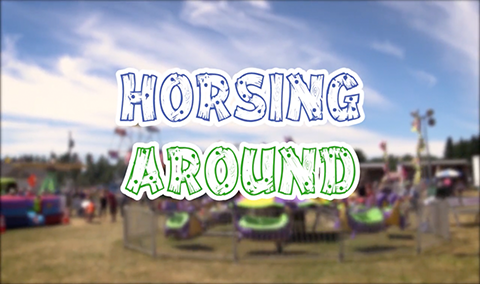 Field Days, 2017 – Horsing Around