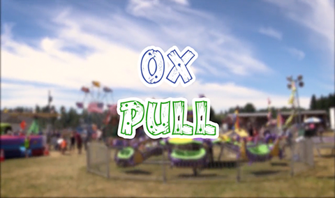 Field Days, 2017 – Ox Pulls