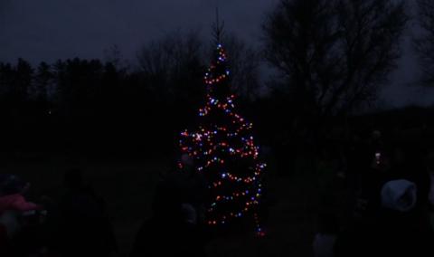 Festival of Lights, 2017 – Tree Lighting